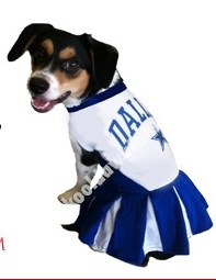NFL Dallas Cowboys Football Cheerleader Outfit Dog Dress