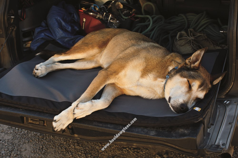 Ruffwear Flophouse Foam Pad