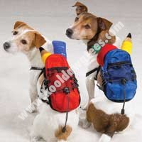 Dog Back Pack - Back To School Pup Packs