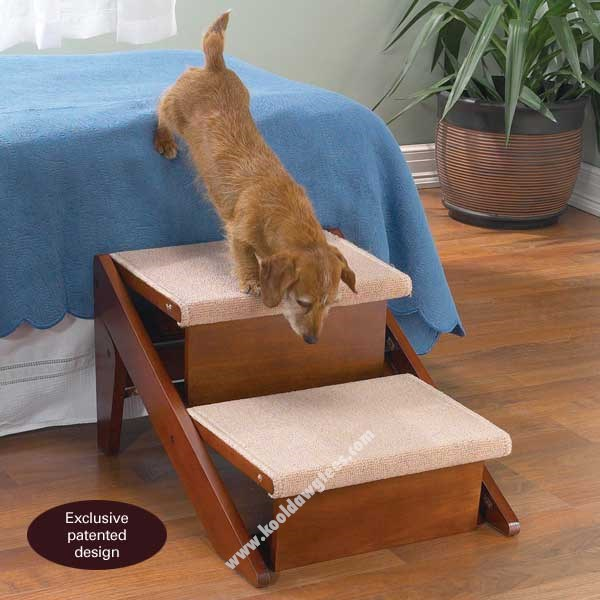 Pet Studio RampSteps-Two Steps