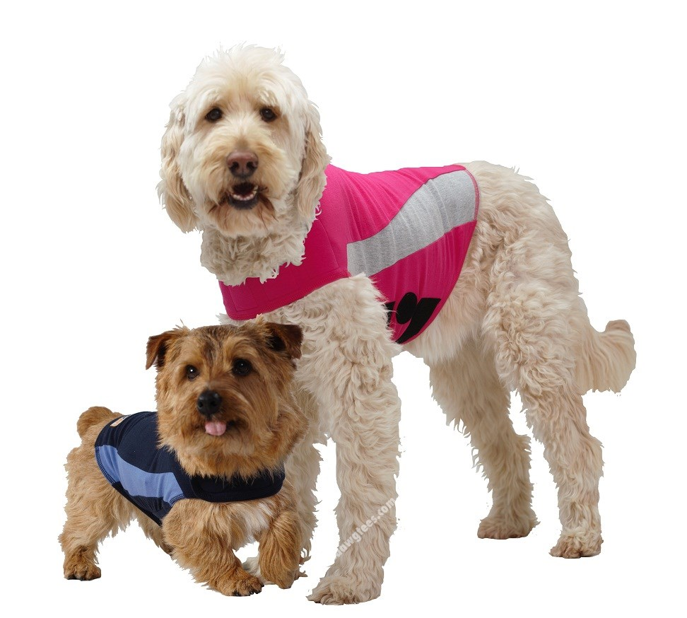 Thundershirt | Blue Polo. Solution for dog anxiety,