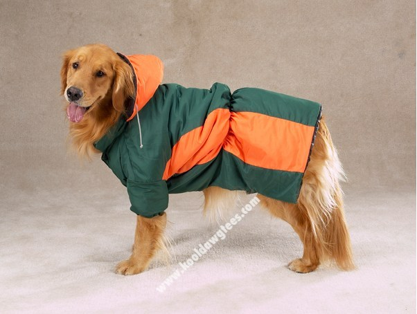 Zack & Zoey Base Camp Dog Parka